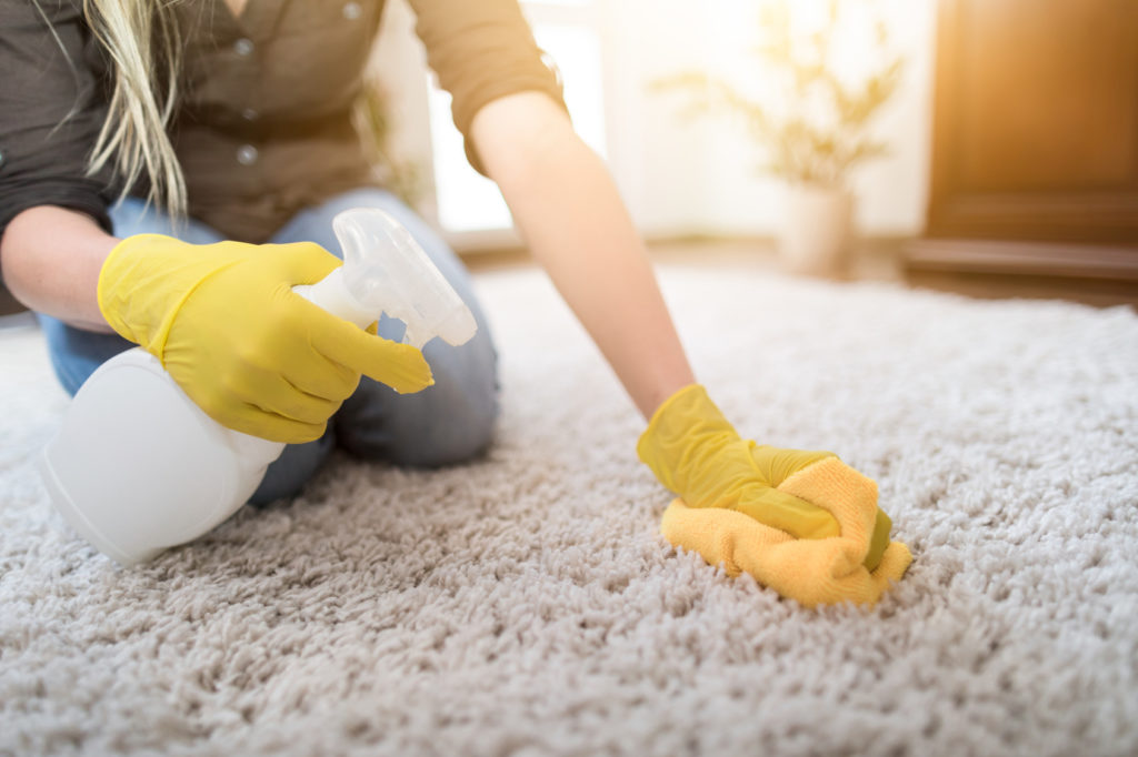 Cleaning carpet moldy